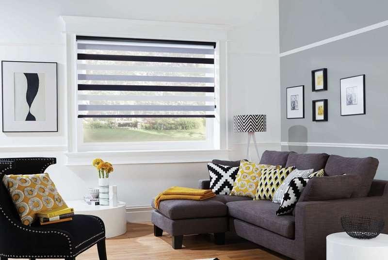 black vision blinds