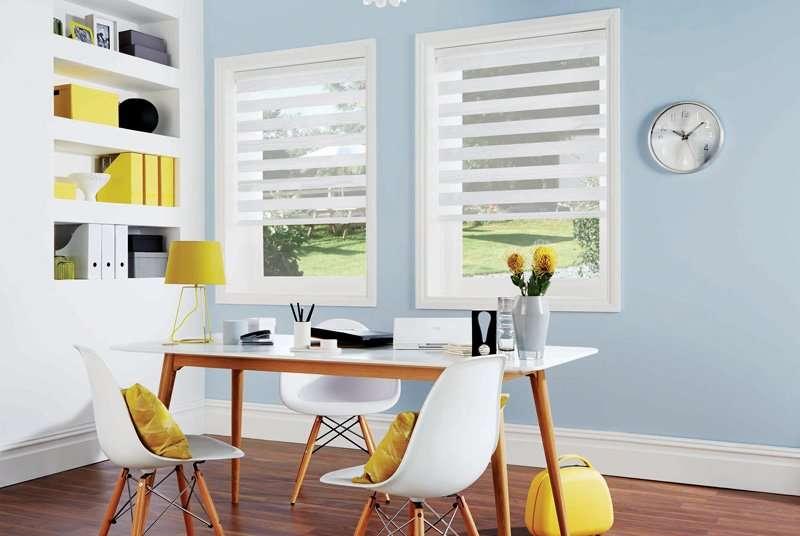 white vision blinds